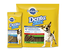 Pedigree® Dental Care