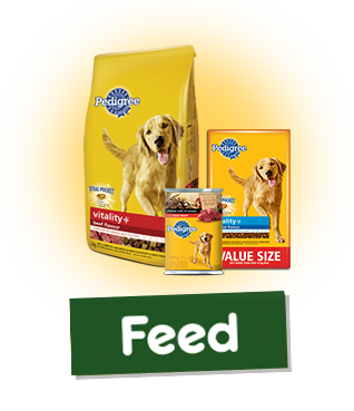 Pedigree® Wet And Dry Products